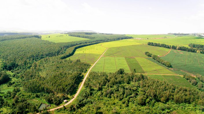 Aerial View of the farm water catchment and forest
